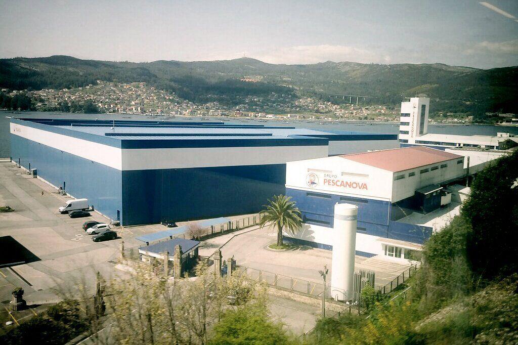 Pescanova fundada en 1960 en Vigo está hoy entre las 10 empresas más importantes del mundo del sector. Foto: Andreu Romaní