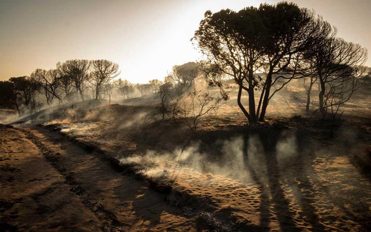 El fuego hiere a un Doñana en situación crítica