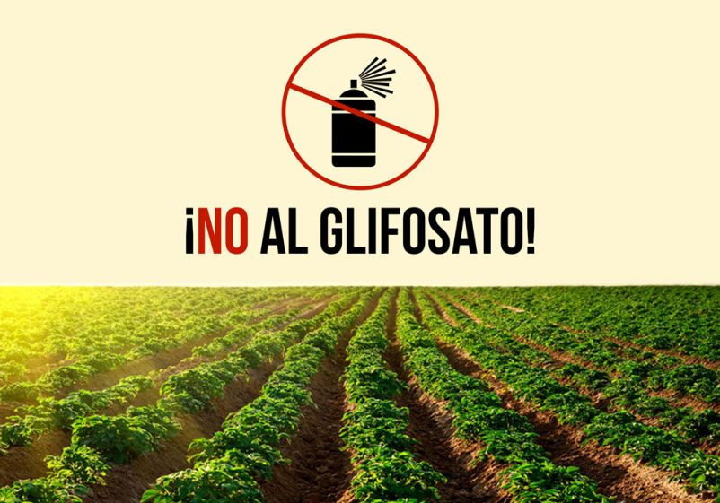 Monsanto doblega a la UE
